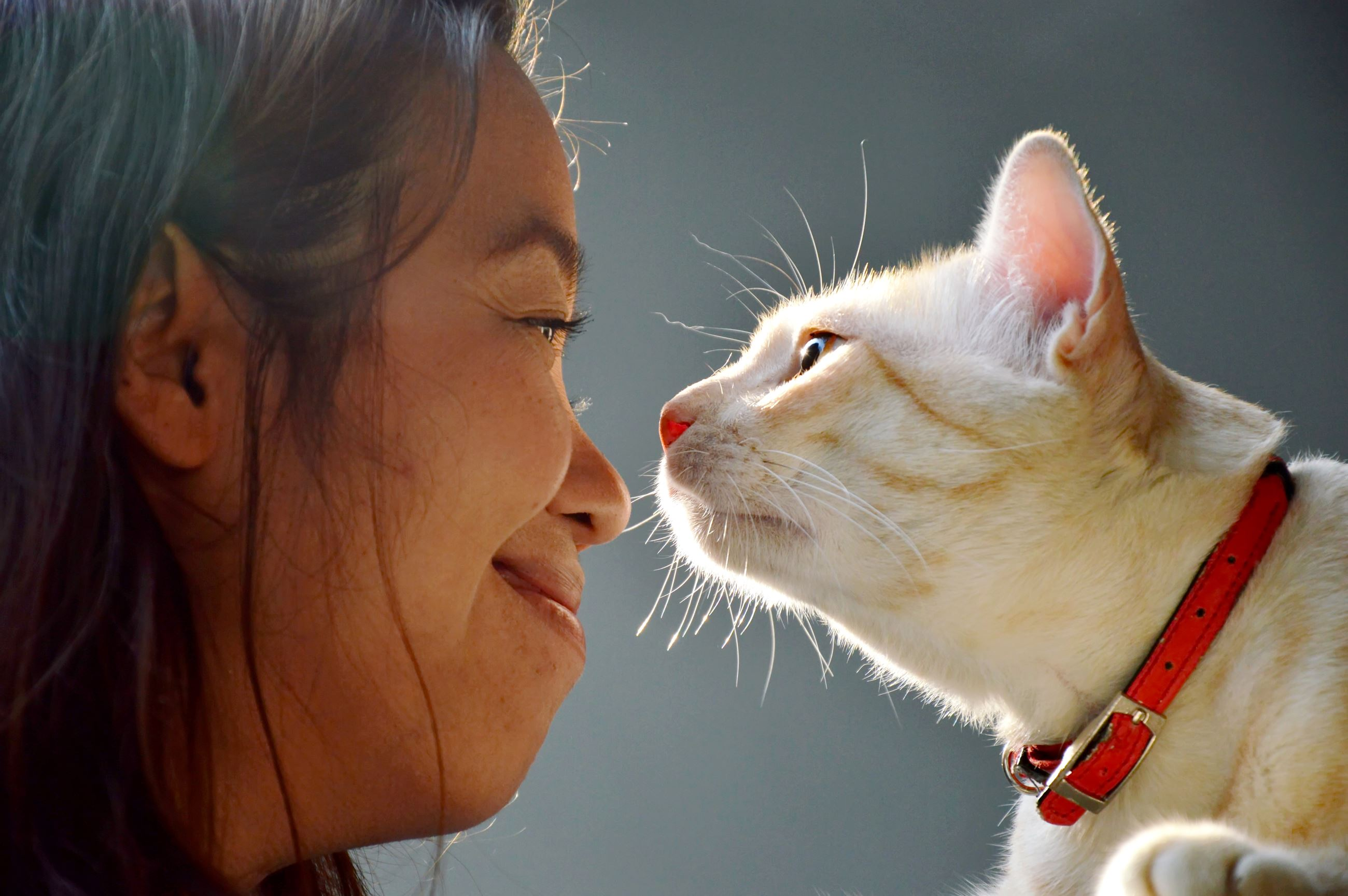 A woman and a cat looking at each other